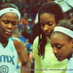 23 lynx team  copyright 2012 sophia hantzes all rights reserved