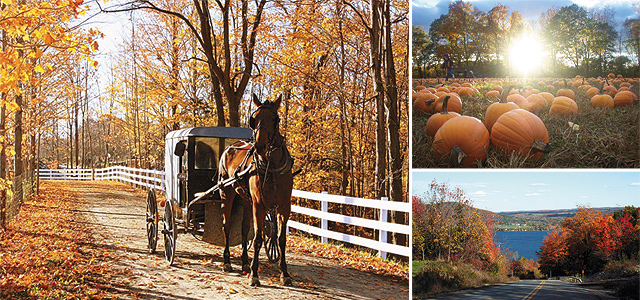(Clockwise from left) Horse Carriage; Pumpkin Patch; Ontario County. Photos courtesy of New York State Tourism.